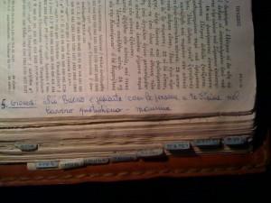 30-frase-di-santina-bibbia-p-455