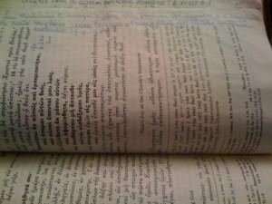 40-frase-di-mamma-su-bibbia-p-633